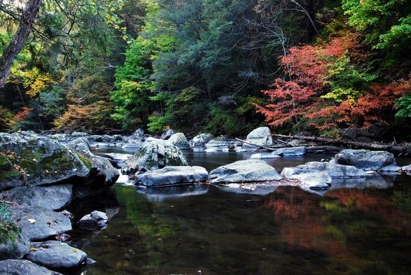 Stone River by Rainy