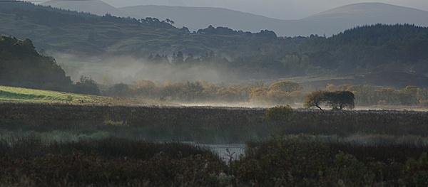 Dalmellington Autumn by DaveH64