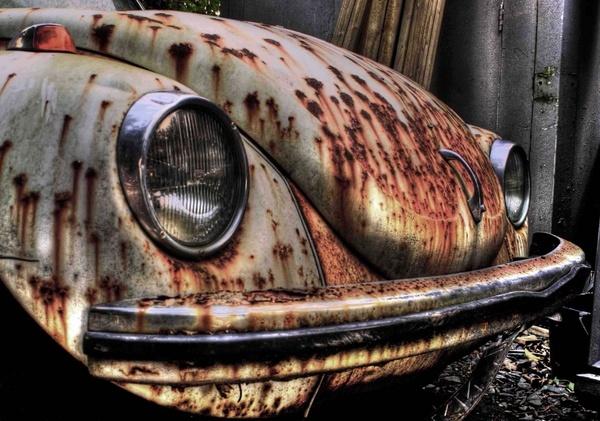 Beetle by chunky1972