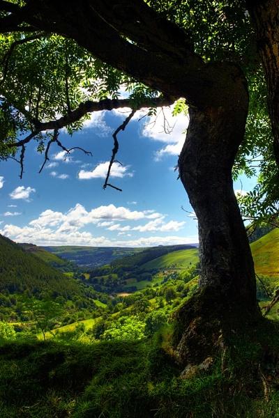 Welsh landscape by hollkj