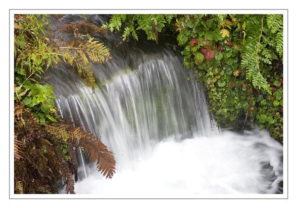 autumn falls by firzhugh