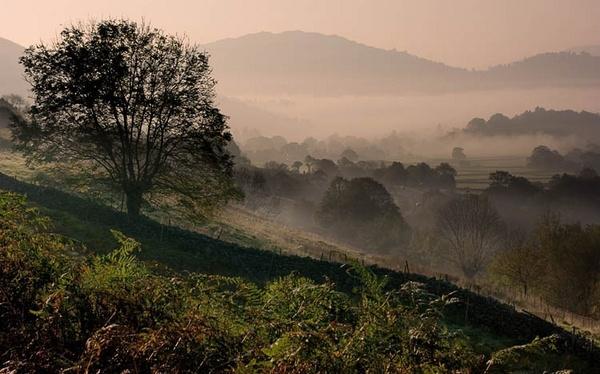 valley mist. by chrisco
