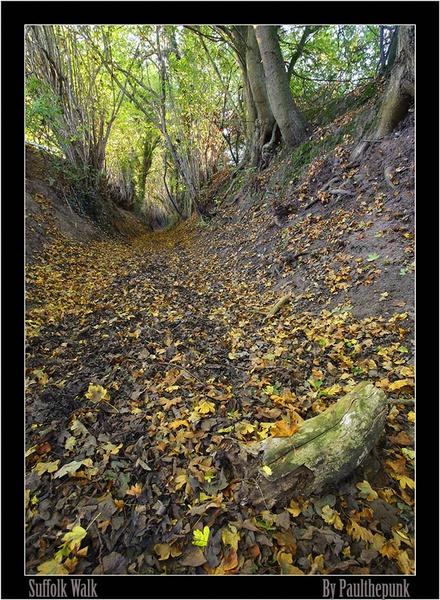 A Suffolk secret spot! by paulthepunk