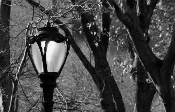 lamp light by EDan