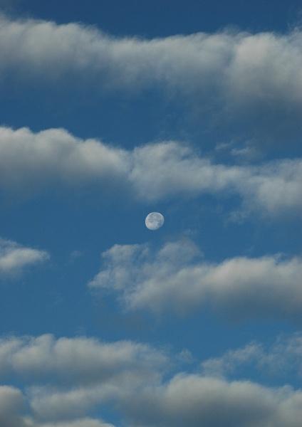 Moon clouds by Birdseye