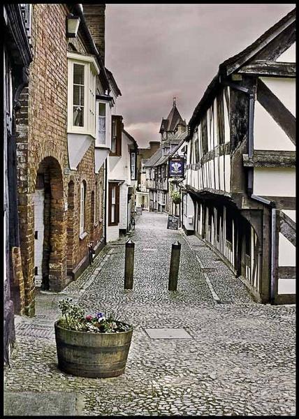 the street by edavid