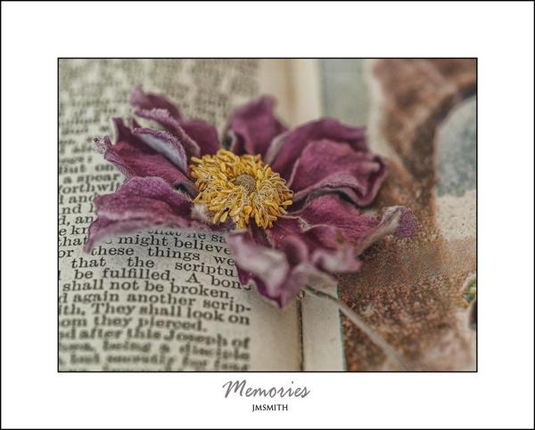 memories by janehewitt