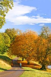 autumnstroll