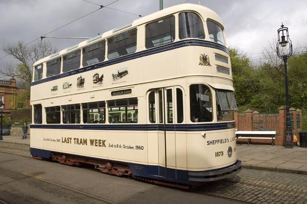 Tram by wheeldon