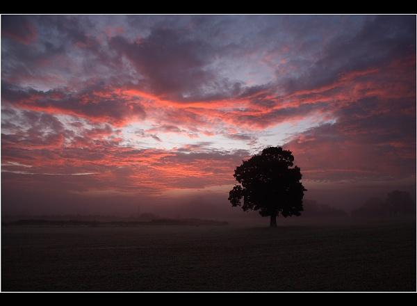 Crimson Dawn by Nigel_95