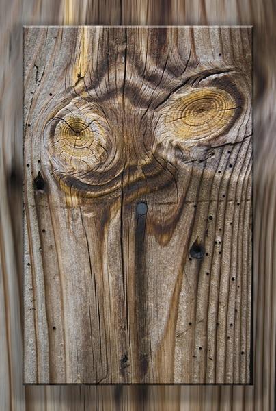 wooden texture by GeorgeLedger