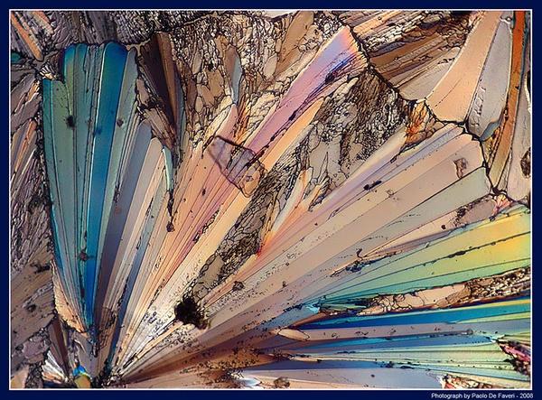 A grain of... sugar! by paolodefaveri