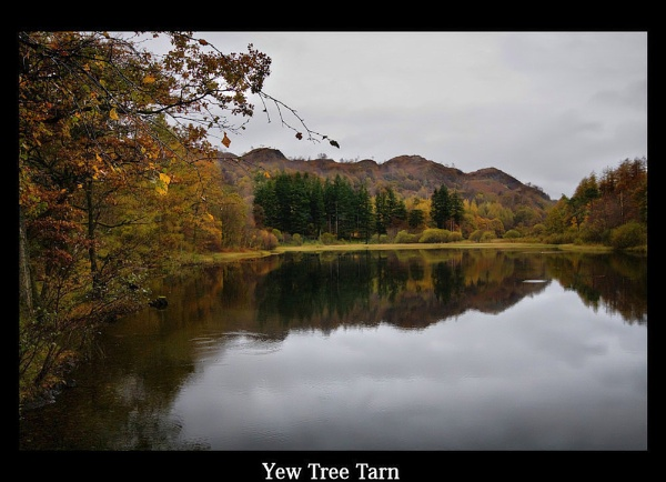 Yew Tree Tarn by peterboyce