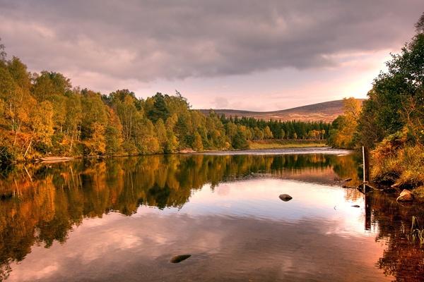 Autumn, Cambus o\' May by Mstphoto