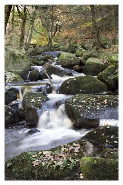 padley gorge1 by edavid