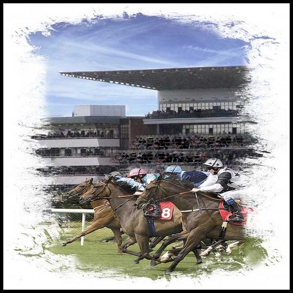 races by edavid