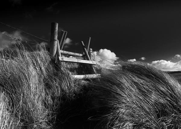 Sea Breeze 2 by Mari