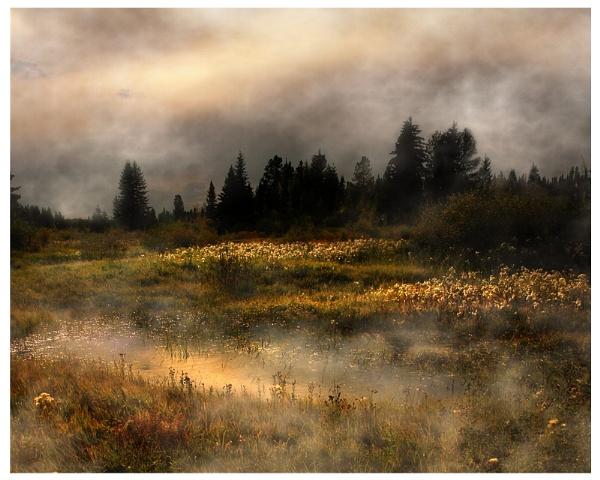 Pond Remix by A_Harrison