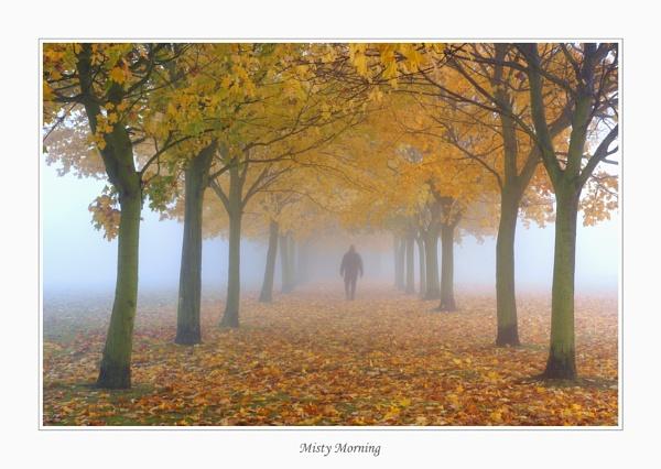 Misty Morning by wyatturp