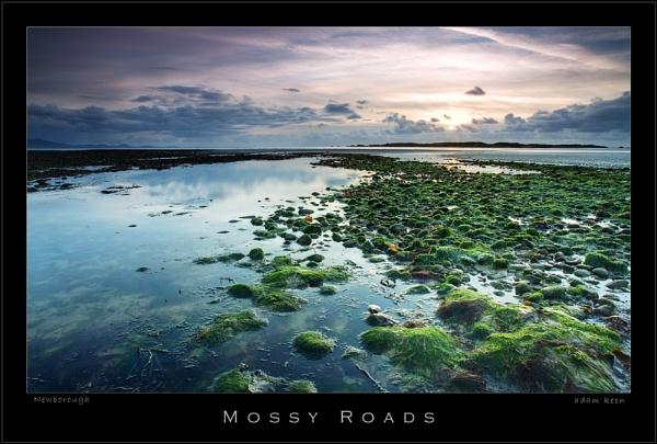 Mossy Roads by sherlob