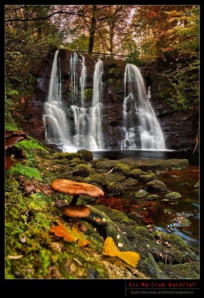 Waterfalls & Mushrooms by garymcparland