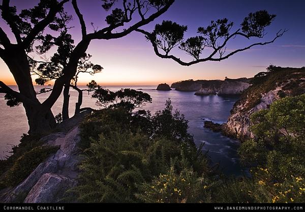 Coromandel Coastline by Guernseydan
