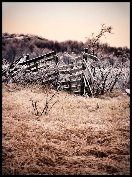 Broken Fence by teodor