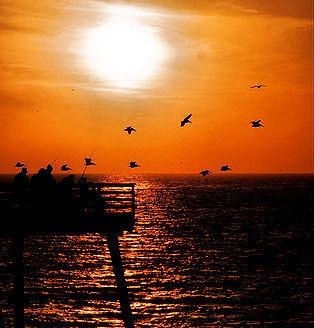 Pismo Beach Sunset by mark2uk