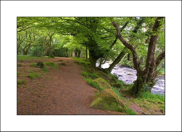 Riverside Path by Banditman
