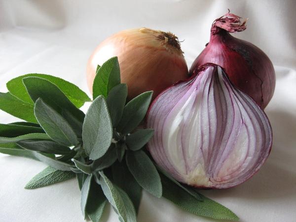 Sage & Onion by SusanKing