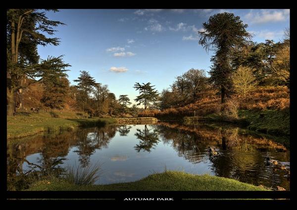 Autumn Park II by BOBtheDAZZLER