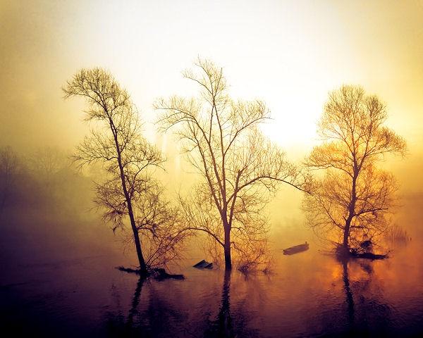 Dawning Flame by Silvijo