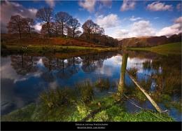 Reflective River - Lake District