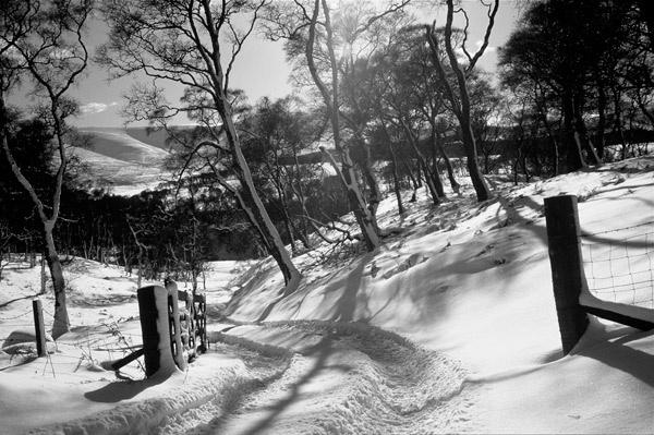 Glen Esk snow by brianm55