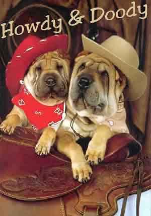 howdy doody by money123