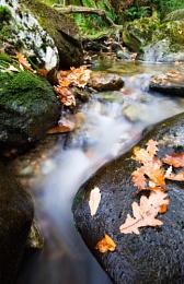 Rowardennan Falls