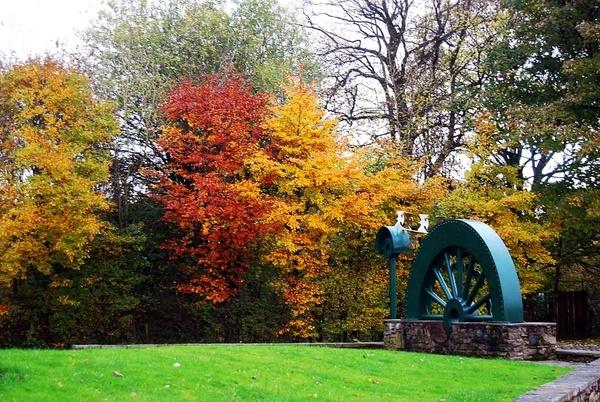 Autumn trees by peel3081