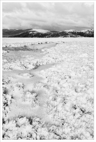 Snowfield. by rontear