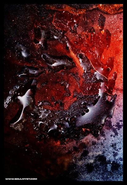 Dolphin Dance by Soulmyst