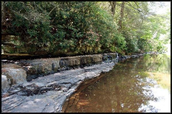 The creek II by wvmountaineers