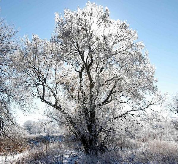 Winter in Colorado by StuartDavie