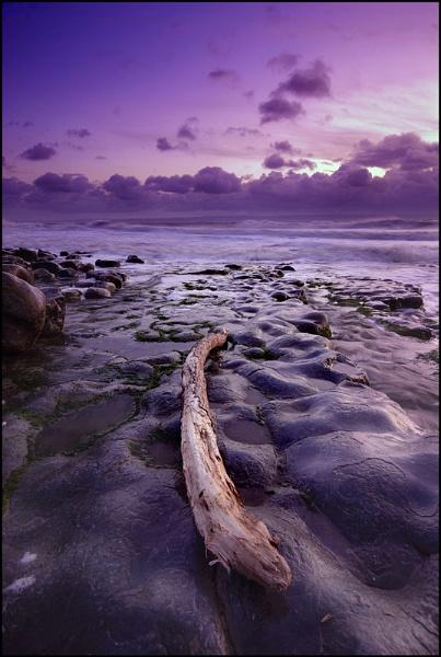 Driftwood by vulkan