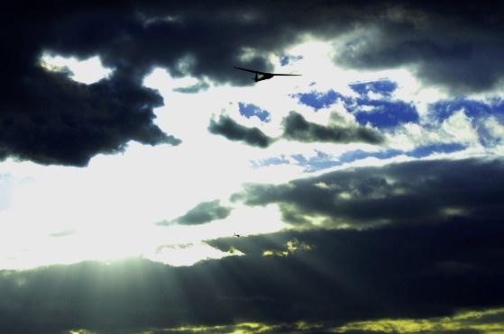 Glider by peteluc