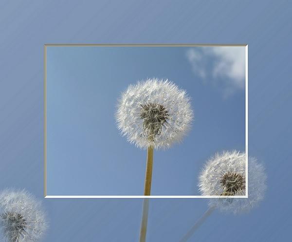 puffs of air by MacroRebel