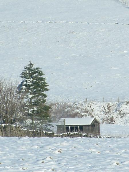 Snowy Peak Dale by Debs_Rocker