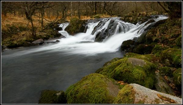 Cold Flow by stevenj