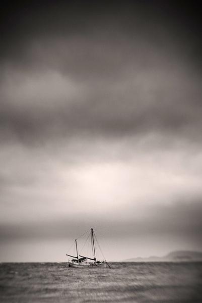 at sea by steve allsopp