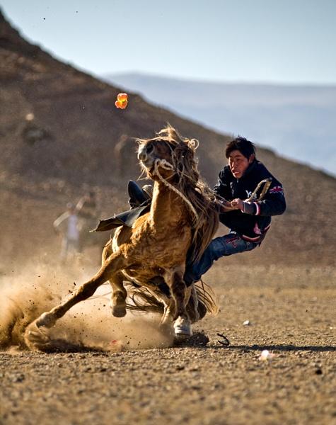 Mongolian Horseman by Henchard