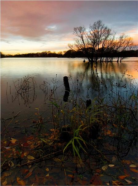 Pebley pond by NEWMANP