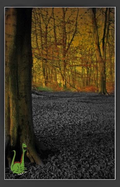 Secret Woods by videotec
